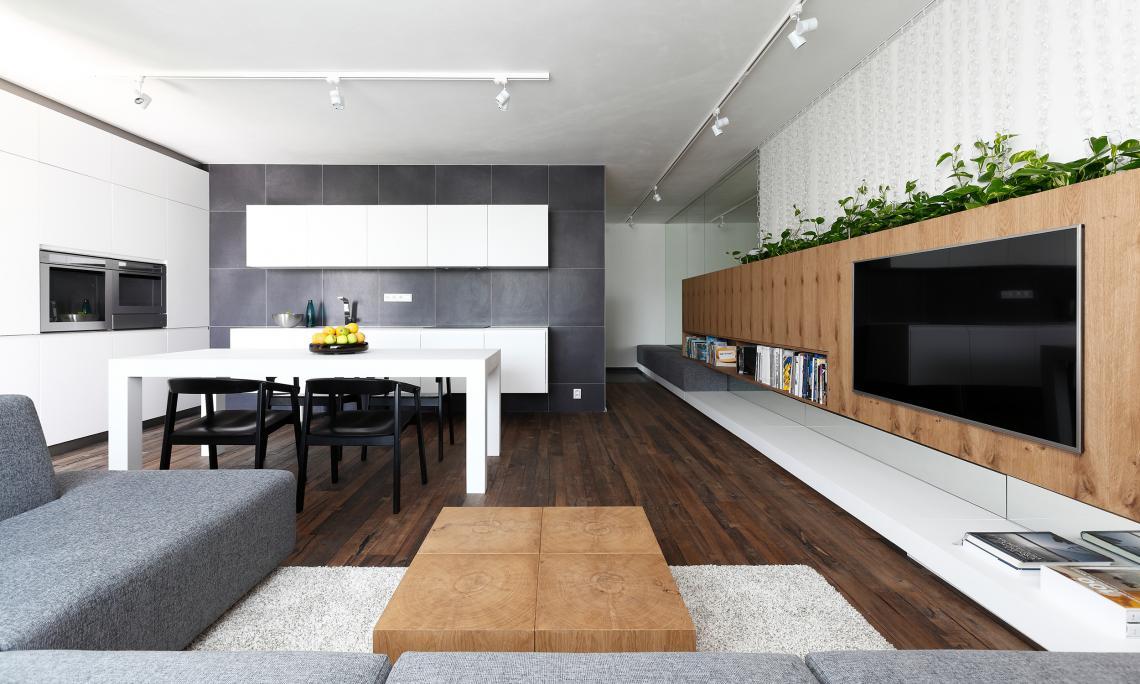 Innenarchitektur Aus Einem Wohnzimmer Mit Küche Und Esszimmer, Bratislava,  Slowakei